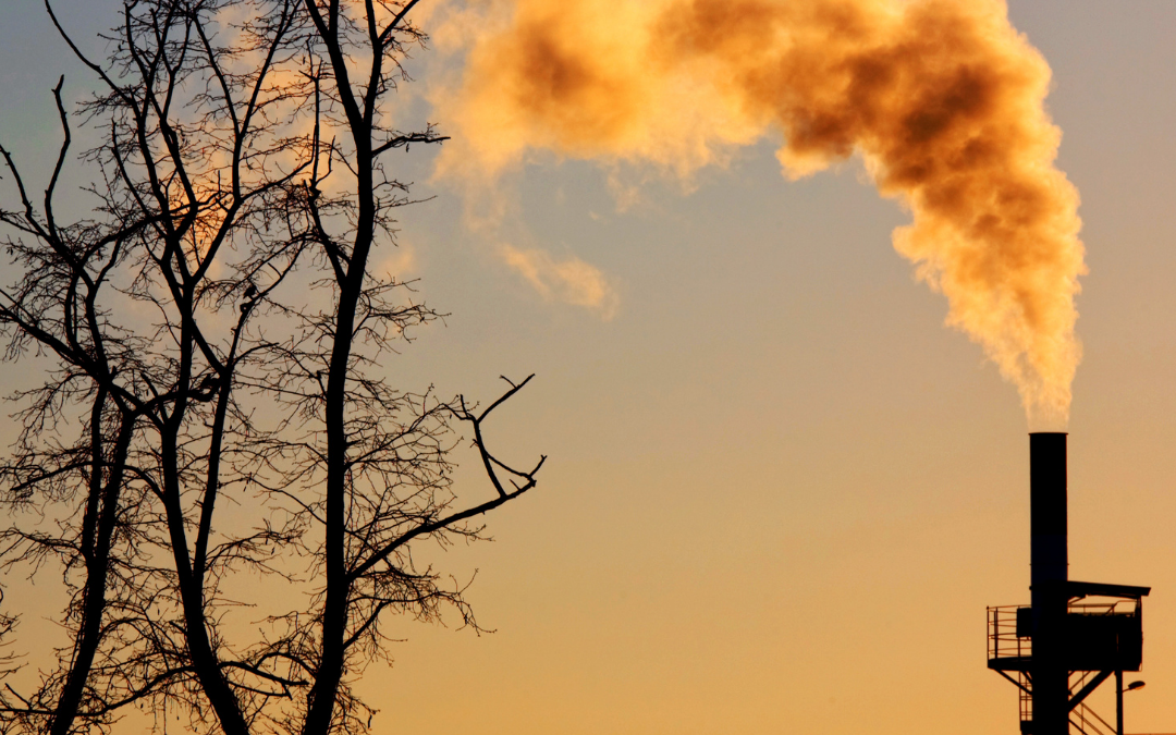 Análisis de la calidad del aire: un aporte para la conservación del medioambiente en Chile.